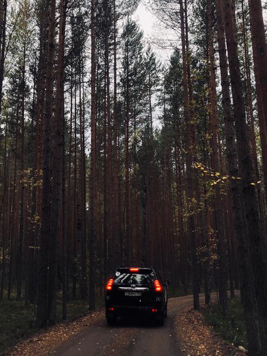 Путевые заметки Алены Чендлер о путешествии по Русскому Северу (фото 2)