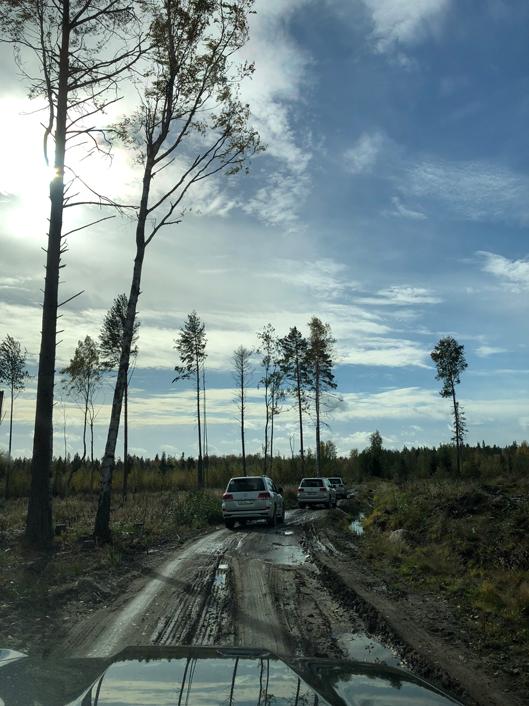 Путевые заметки Алены Чендлер о путешествии по Русскому Северу (фото 7)
