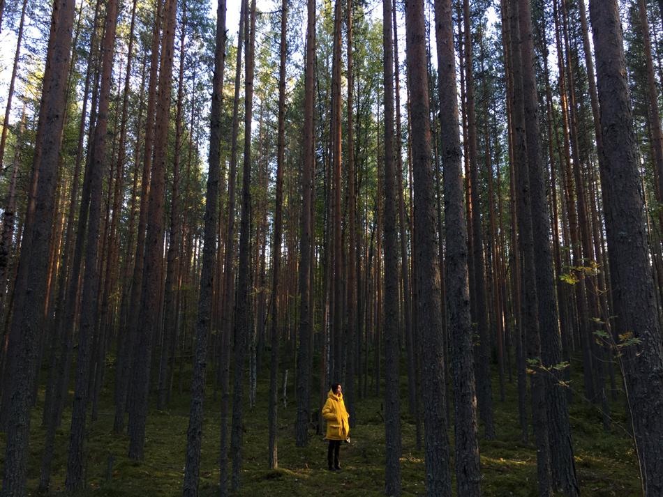 Путевые заметки Алены Чендлер о путешествии по Русскому Северу (фото 1)