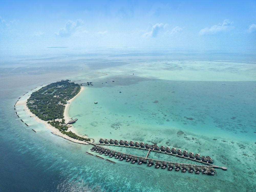 Оказались на Мальдивах? Первым делом ищите уникальный подводный музей (фото 2)