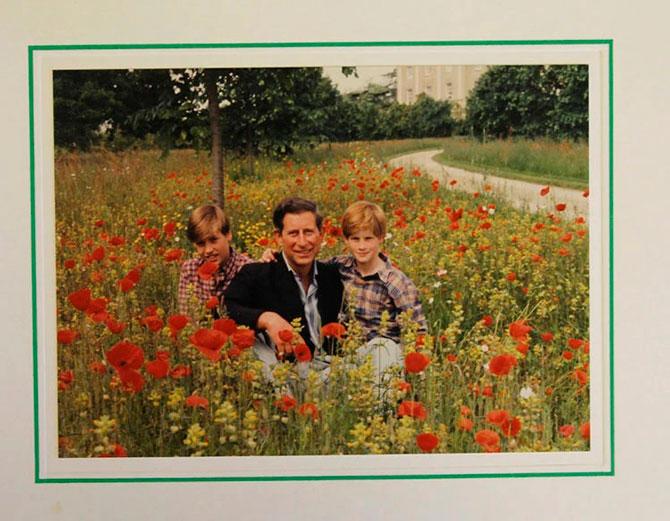 В Сети появились коллекционные рождественские открытки Елизаветы II (фото 14)