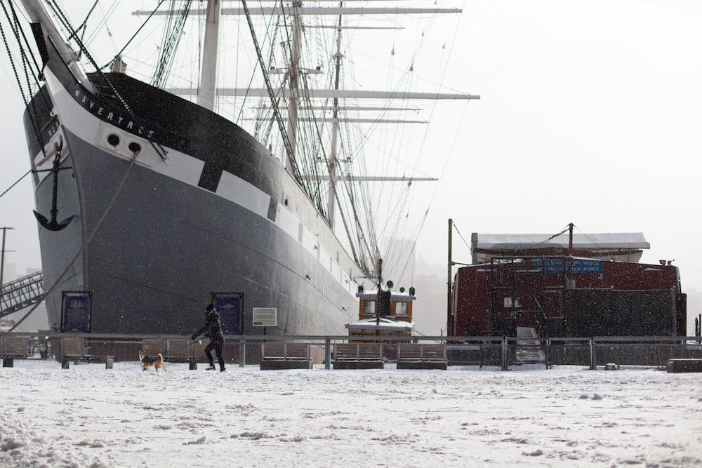 Зима в Нью-Йорке: как город встретил эти праздники (фото 4)