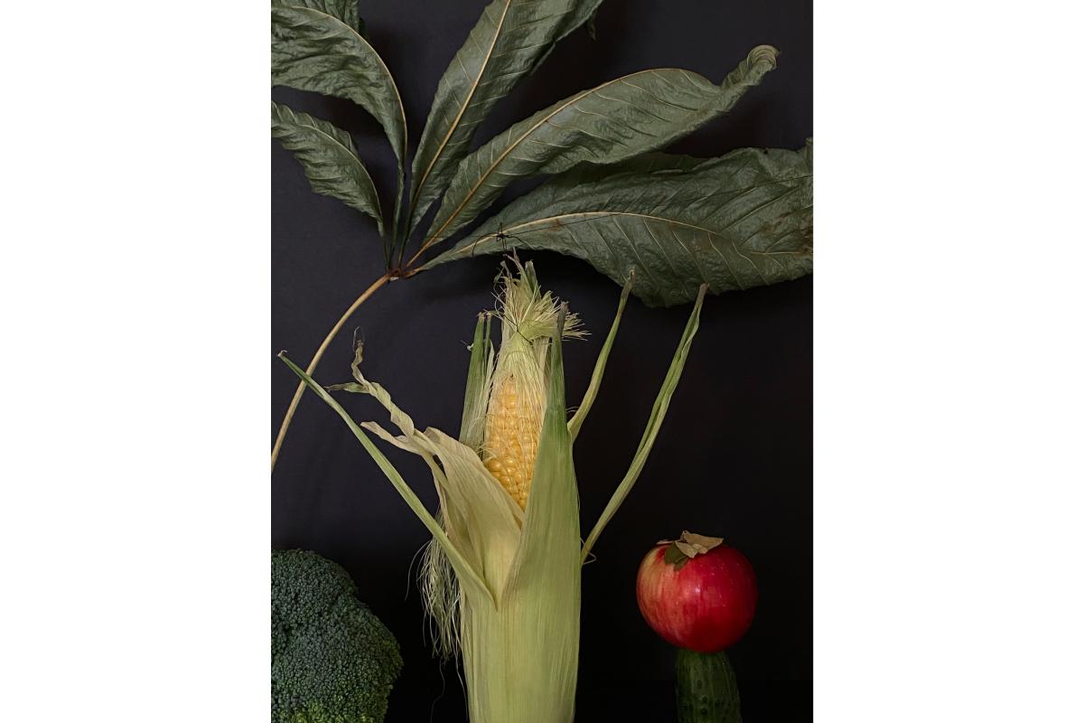 Художники сделали работы из овощей и фруктов для проекта онлайн-галереи Sample и Даниловского рынка (фото 9)