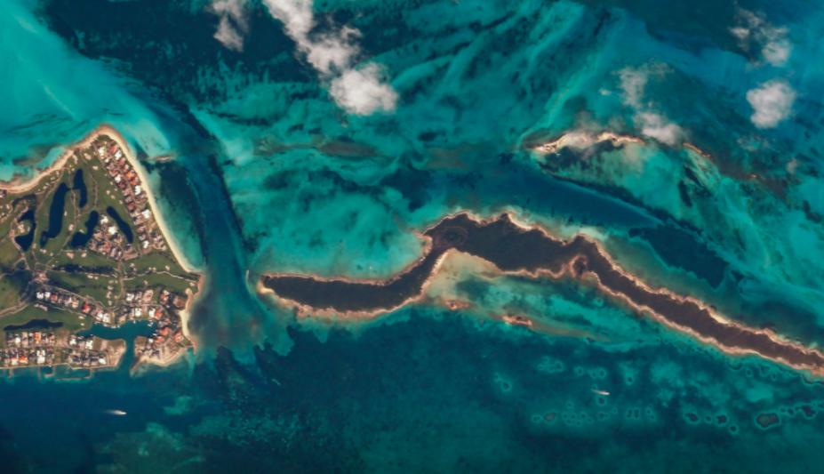Canon запустил сайт, который позволяет фотографировать из космоса (фото 1)