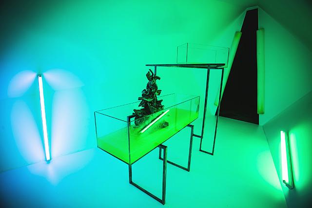 """Выставка Lexus Hybrid Art 2014: """"гибридное"""" искусство на ВДНХ (фото 12)"""