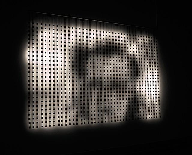 """Выставка Lexus Hybrid Art 2014: """"гибридное"""" искусство на ВДНХ (фото 7)"""