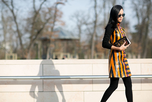 Paris Fashion Week A / I 2015: street style.  Part 7 (12 foto)