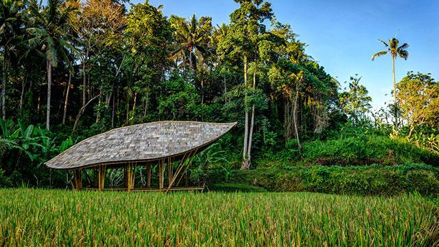 Как отдохнуть на Бали, если у вас всего неделя на отпуск (фото 14)