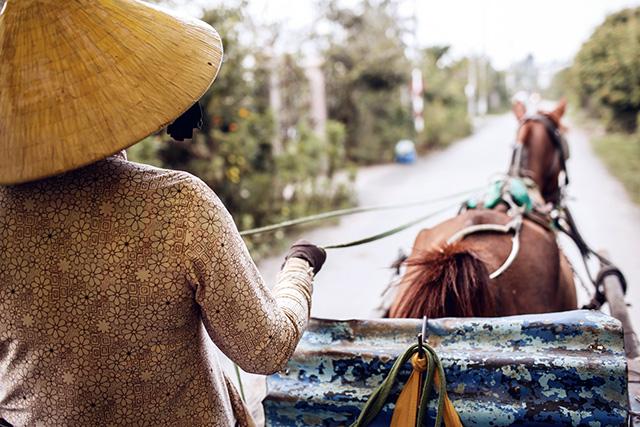 Путевые заметки: Вьетнам (фото 50)