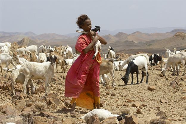 От Марокко до Уганды: кинопутешествие по Африке в 15 фильмах (фото 5)