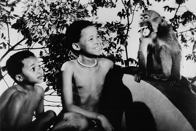 От Марокко до Уганды: кинопутешествие по Африке в 15 фильмах (фото 8)