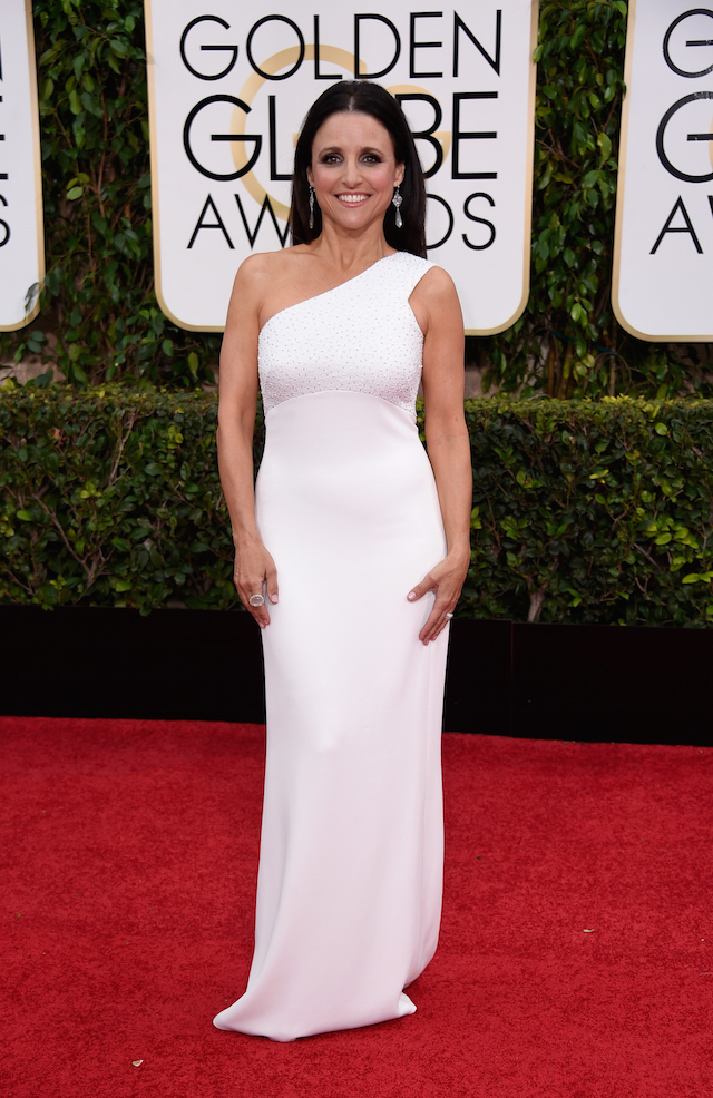 """Golden Globe Awards - 2015"": red carpet (26 foto)"