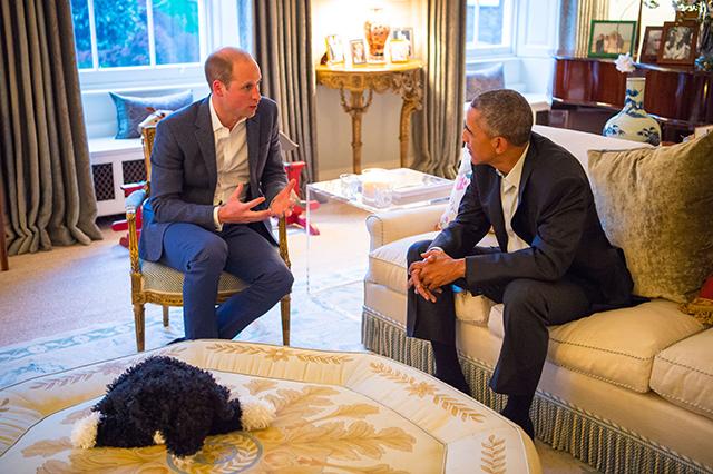 После ванны — на встречу с Обамой: принц Джордж поприветствовал президента США (фото 4)