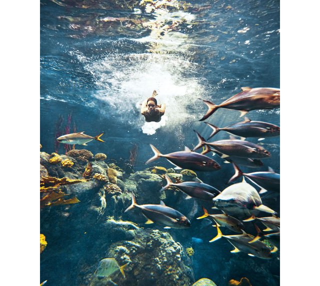 Rihanna swims with sharks in the pages of Harper's Bazaar (photo 1)