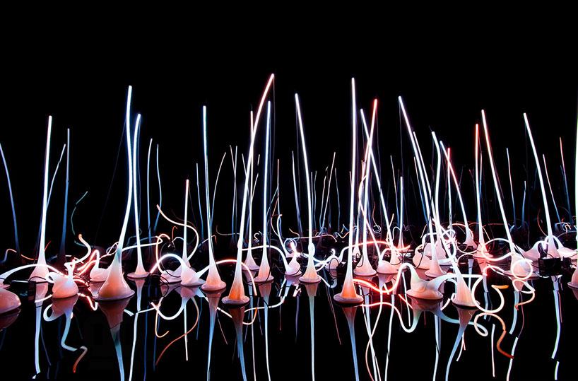 Стеклянный сад в Монреальском музее изящных искусств (фото 2)