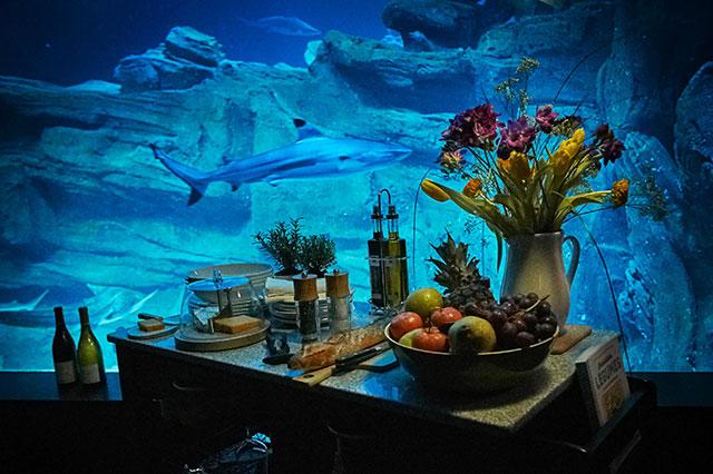 Airbnb предложил поспать с акулами (фото 2)