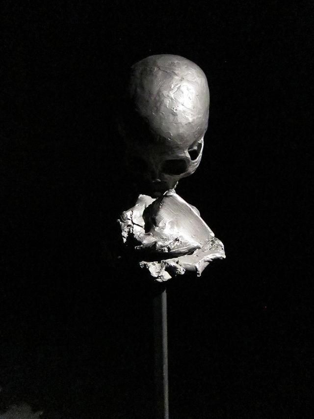 """""""Астралис"""": новая выставка в парижском Espace Culturel Louis Vuitton (фото 1)"""