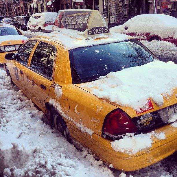 Instagram-мания: New York, New York! (фото 6)