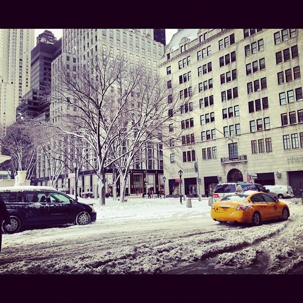 Instagram-мания: New York, New York! (фото 2)