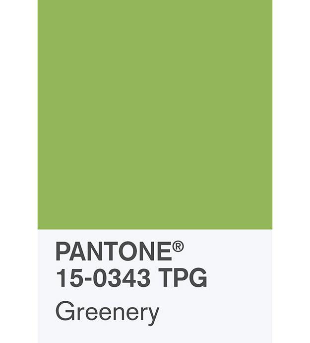 Пантон зеленый цвет