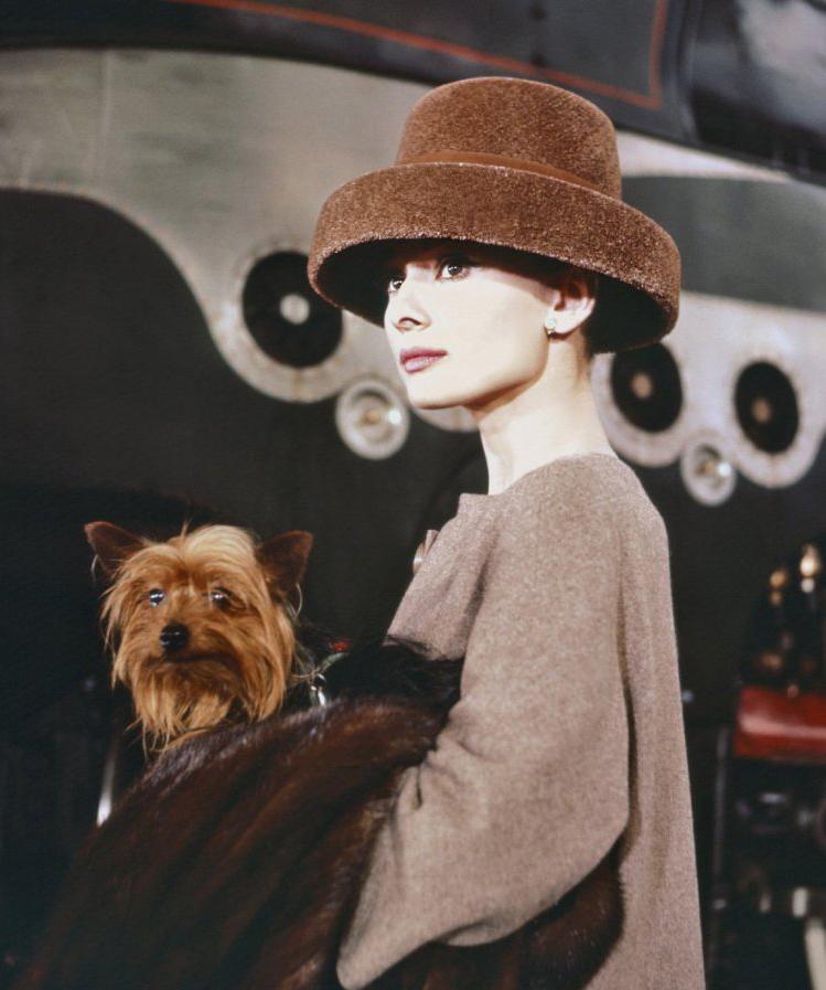 Новая книга о стиле Одри Хепберн (фото 8)