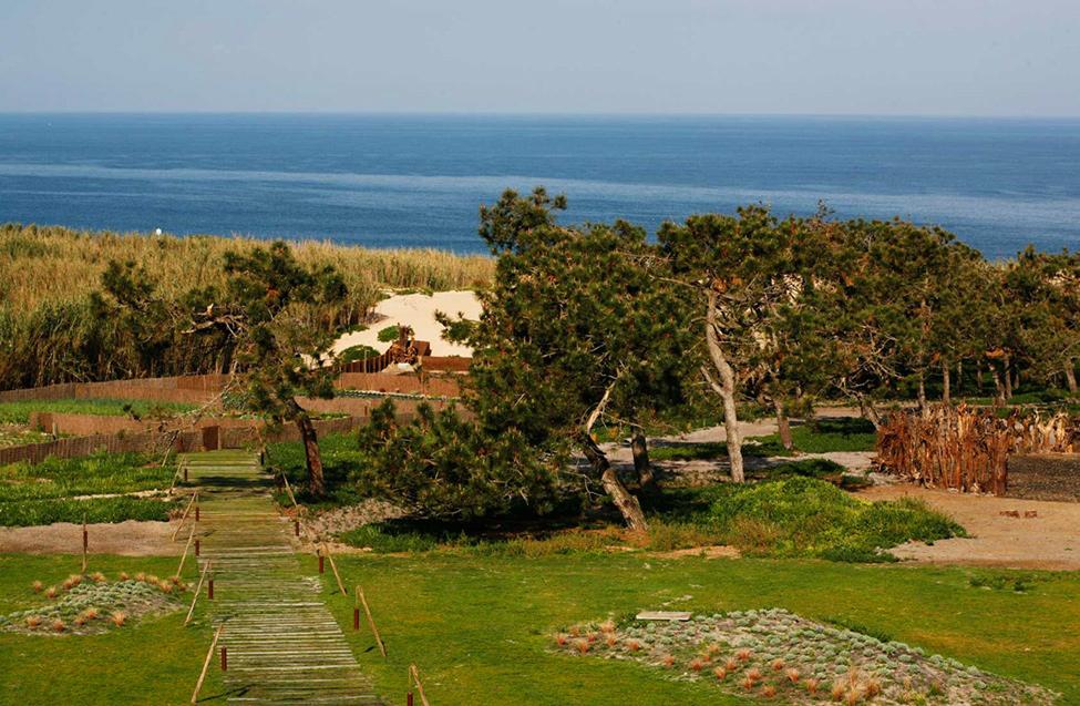 Эко-отель Areias Do Seixo Charm в Португалии (фото 19)