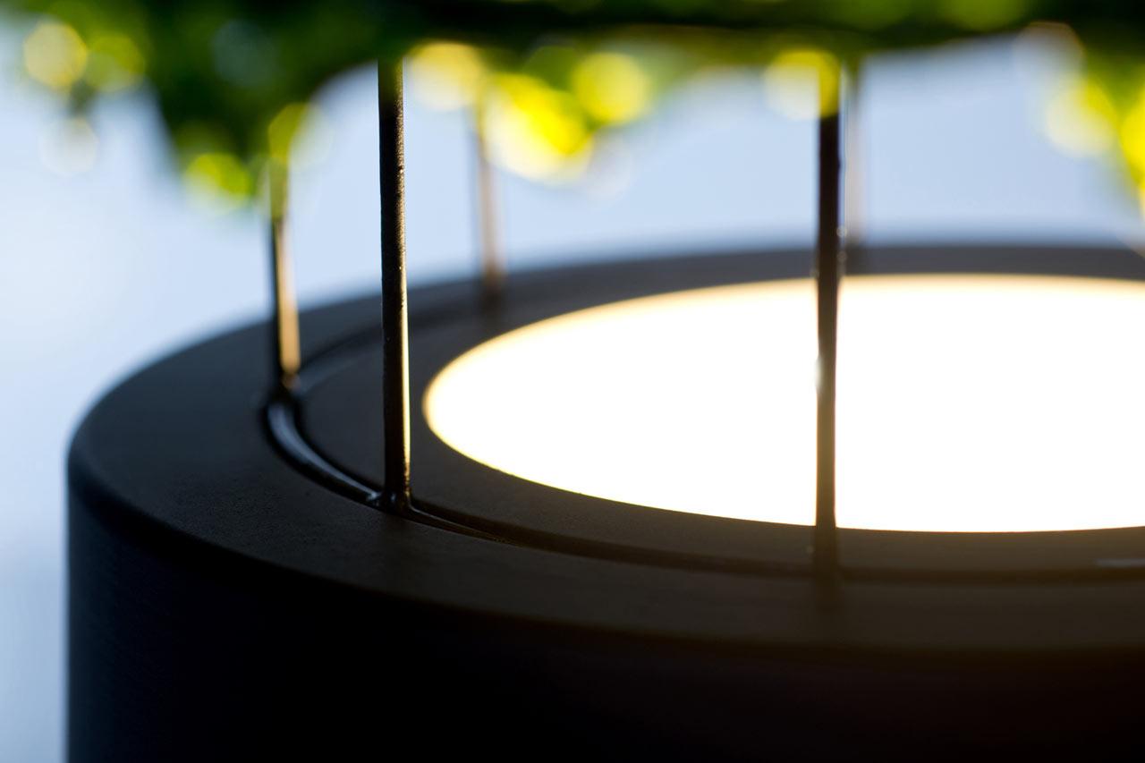 Лампы с водорослями от Nir Meiri (фото 4)
