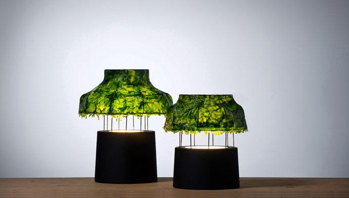 Лампы с водорослями от Nir Meiri (фото 1)