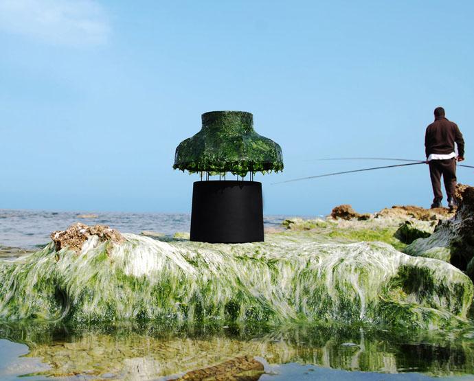 Лампы с водорослями от Nir Meiri (фото 6)