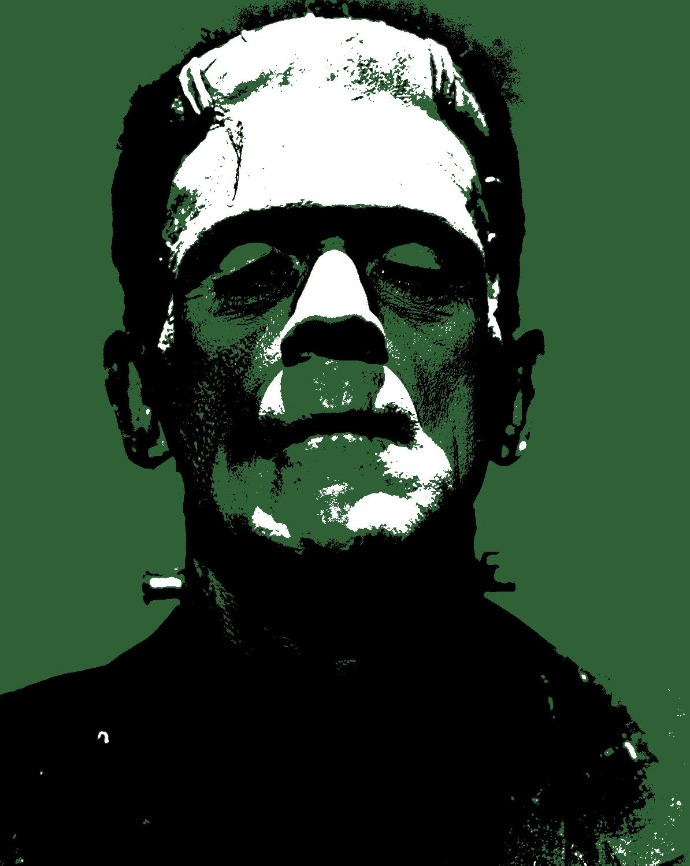 bookrags frankenstein essay Professional essays on frankenstein authoritative academic resources for essays, homework and school projects on frankenstein.
