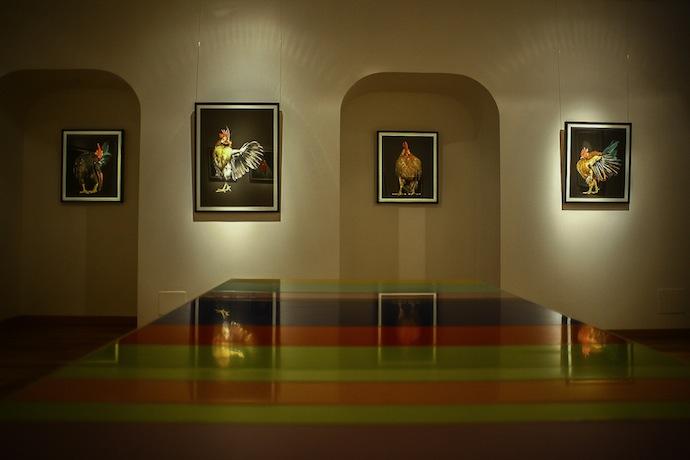 """Галерея """"Победа"""" в ГУМе: первые кадры (фото 9)"""