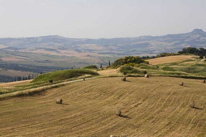 Волшебные пейзажи Тосканы (фото 7)