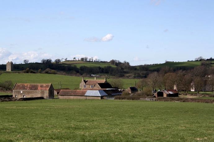 Галерея Hauser & Wirth в английской деревне (фото 3)