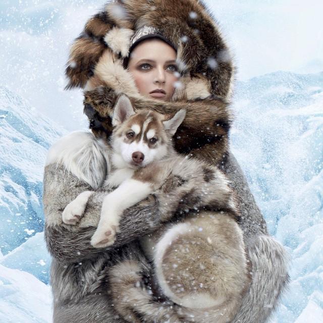 Winter tbt by stevenmeisel