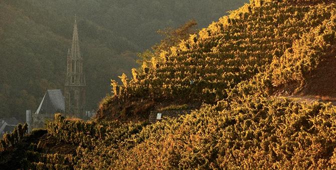 Эльзасская винная республика