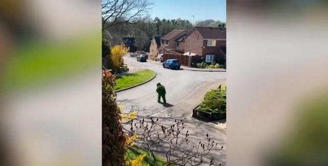 Британец замаскировался под куст, чтобы выйти на улицу во время карантина