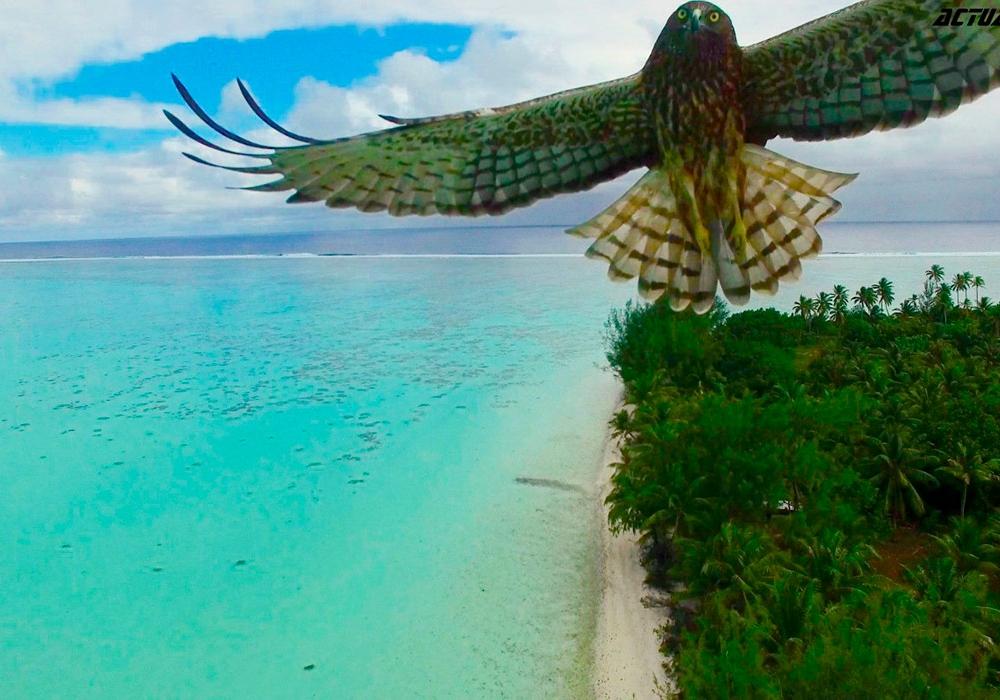 Французская Полинезия (Actua Drone)