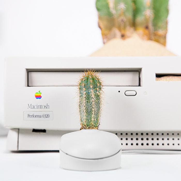И пусть компьютер зеленеет! 5