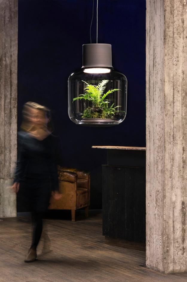 Лампы-террариумы для ленивых цветоводов