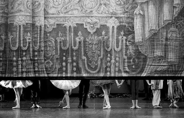 Dance Open: чего ждать от петербургского фестиваля?