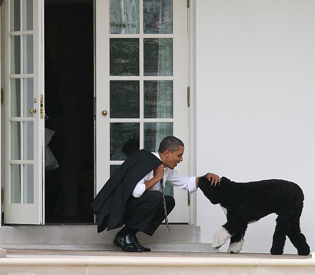 Барак Обама советует слушать Принса иBeach Boys
