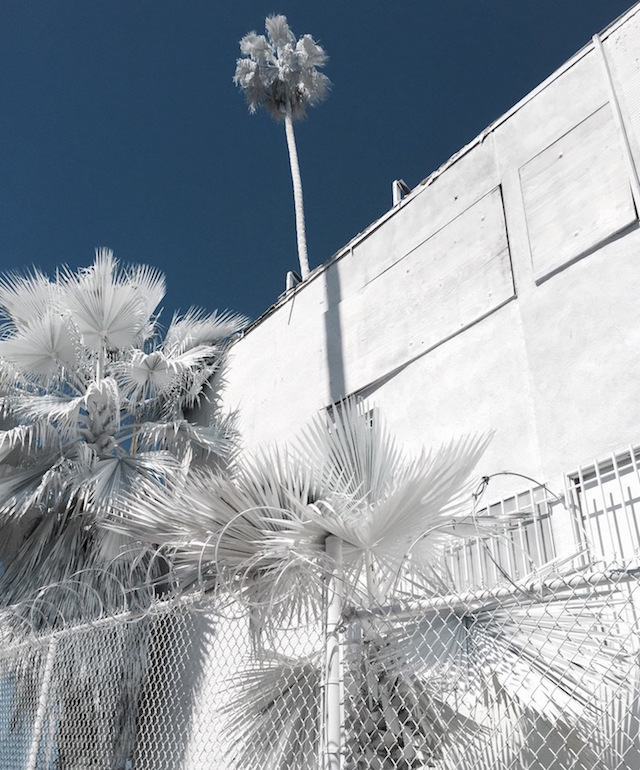 Отель в Лос-Анджелесе стал городской инсталляцией