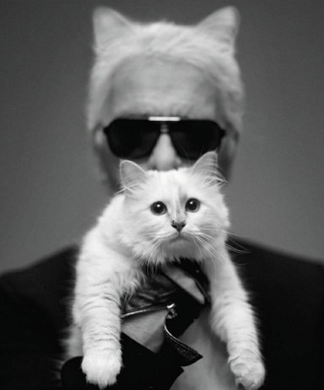 Karl Lagerfeld lancia il proprio giornale