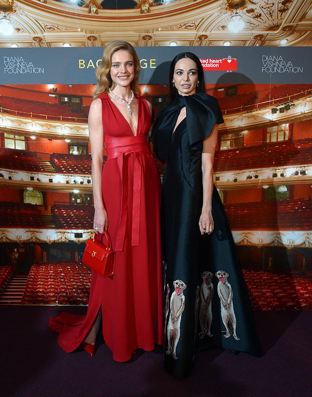 Благотворительный вечер Натальи Водяновой и Дианы Вишневой