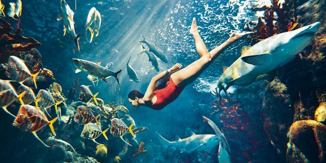 Rihanna poses inside a shark's mouth for Harper's Bazaar