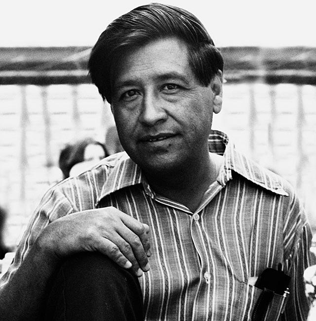 Шанель чавес биография — pic 12