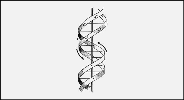 Что нужно знать об эпигенетике