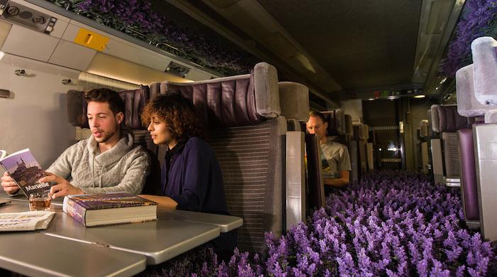 Лавандовые поля в поезде Eurostar по случаю запуска нового направления
