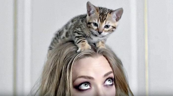 Аманда Сейфрид в рекламе аромата Live Irrésistible Givenchy