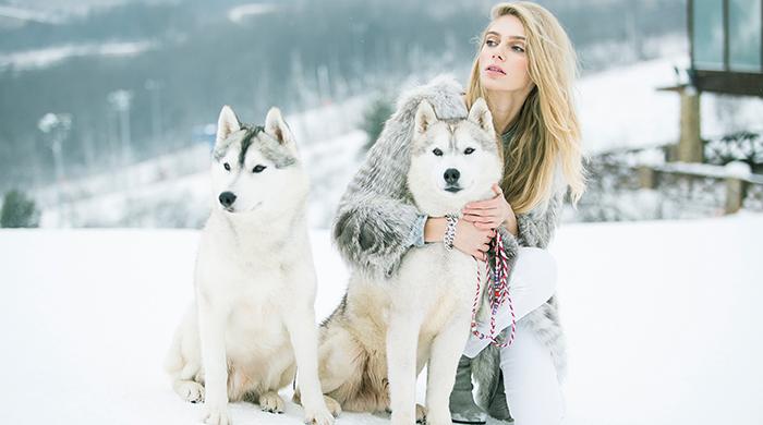 Ясмина Муратович и хаски в зимней съемке Buy by Me